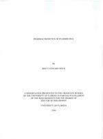 Pharmacokinetics of plasmid DNA
