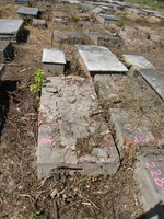 Gravestone 224, Hunt's Bay Jewish Cemetery (no survey form included; images only)