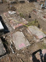 Gravestone 229, Hunt's Bay Jewish Cemetery