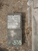 Gravestone 338, Hunt's Bay Jewish Cemetery (Last Name: Massias, First: Abigail, Title: daughter)