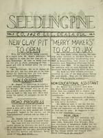 Seedling pine