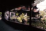 China - Yu Yuang Tray A (Kenneth Treister Slide Collection - Carousel 149)