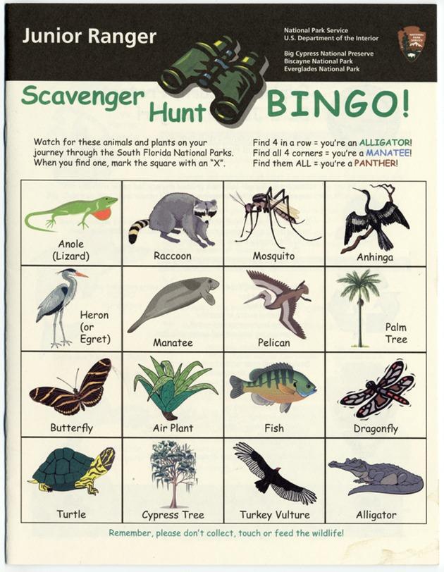 Junior Ranger: Scavenger Hunt Bingo! - Page 1