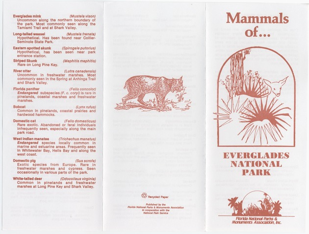 Mammals of Everglades National Park - Page 1