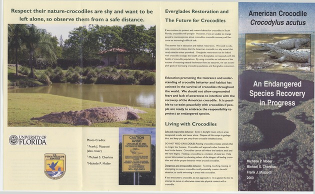 American Crocodile: An Endangered Species Recovery in Progress - Page 1