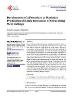 Development of a Procedure to Maximize Production of Hardy Rootstocks of Citrus Using Stem Cuttings