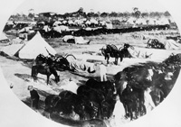 A Military encampment in Tampa during the Spanish American War of 1898.