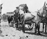 A Provisions wagon with a civilian man, woman, a soldier, and a horse are pulled through the sands of Port Tampa City.