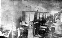 A View of the cigar makers of the Seidenberg Cigar Factory in 1894.