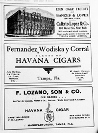 Advertisements for Calixto Lopez & Co., Fernandez, Wodiska, y Corral, and F. Lozano, Son & Company.