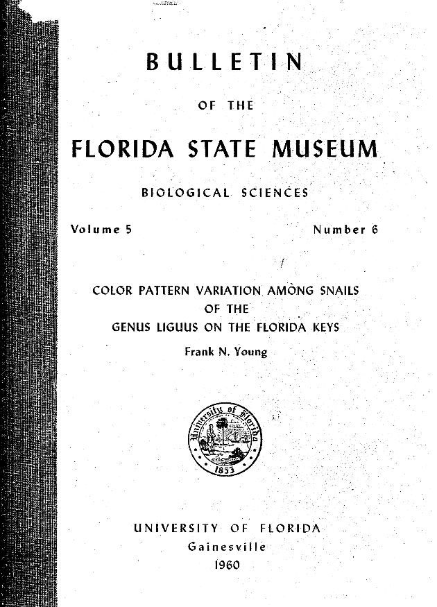 Color pattern variation among snails of the genus Liguus on the Florida Keys - Page 257
