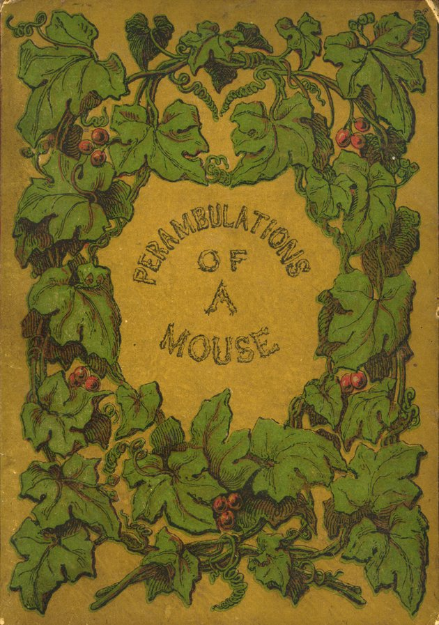 Life and perambulations of a mouse - Front Cover