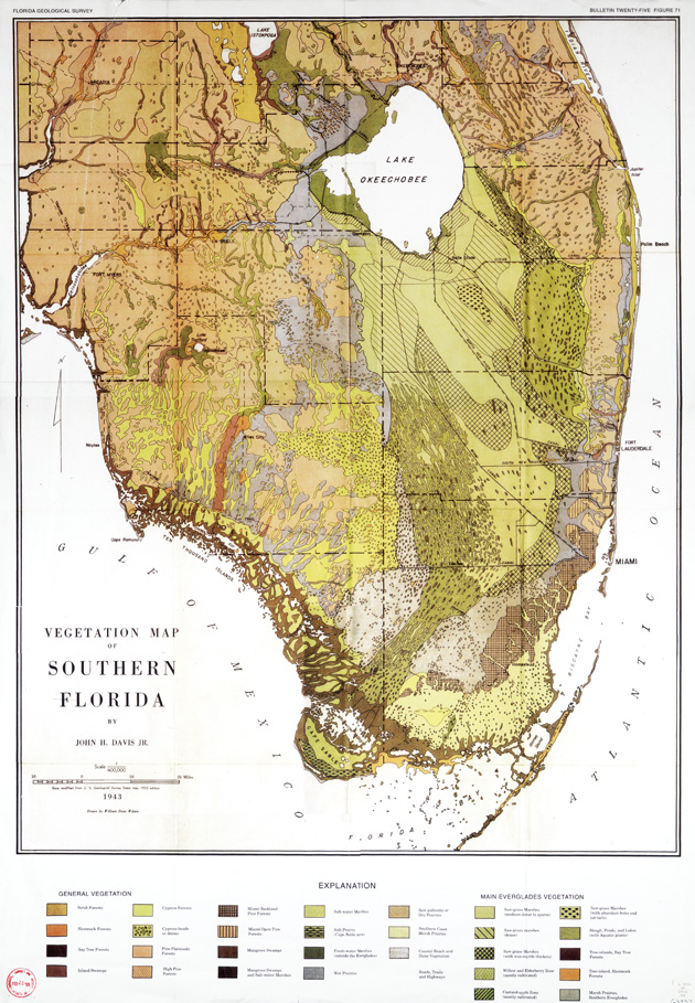 Vegetation map of Southern Florida
