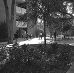 University of Florida students at Little Hall with an honor apple stand to right.