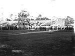 University of Florida students gather on Florida Field