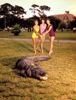 Three University of Florida coeds in bathing suits on the Plaza of the Americas hold rope tied around the neck of Albert the Alligator