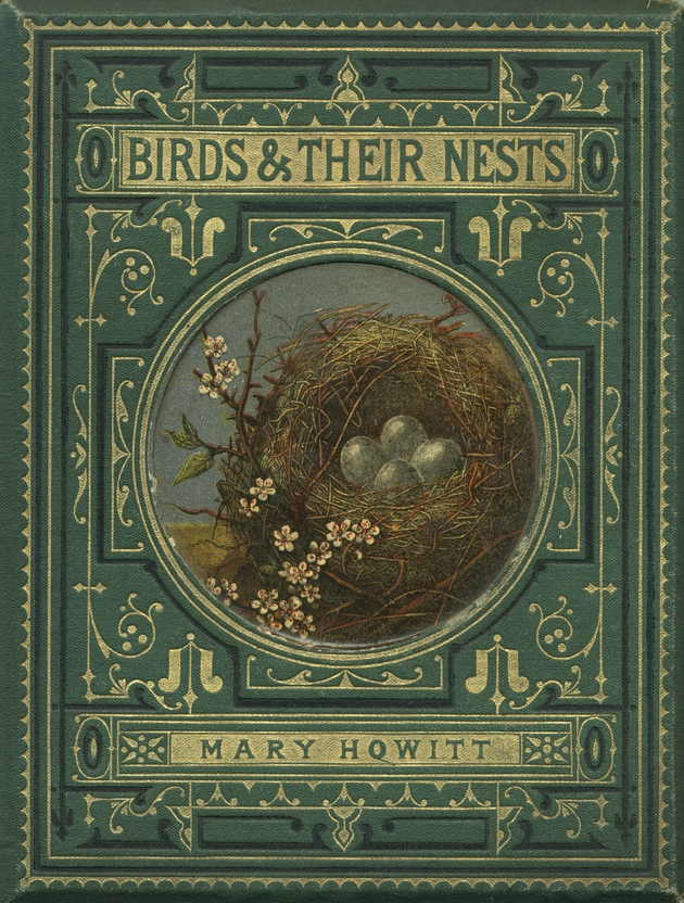 Birds and their nests  - Cover 1