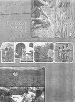 Annual report, International Institute of Tropical Agriculture annual report