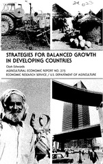 Strategies for balanced growth in developing countries