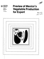 Preview of Mexico's vegetable production for export