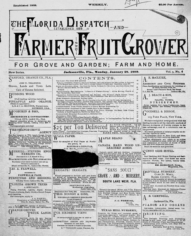 Florida dispatch and farmer and fruit grower - Page 1