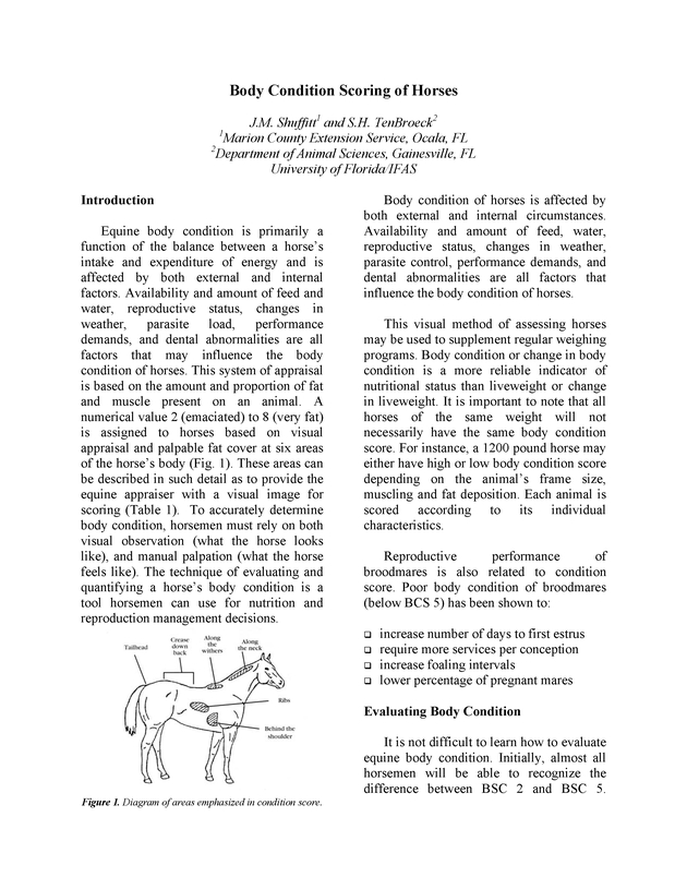 Body condition scoring  of horses - Page 1