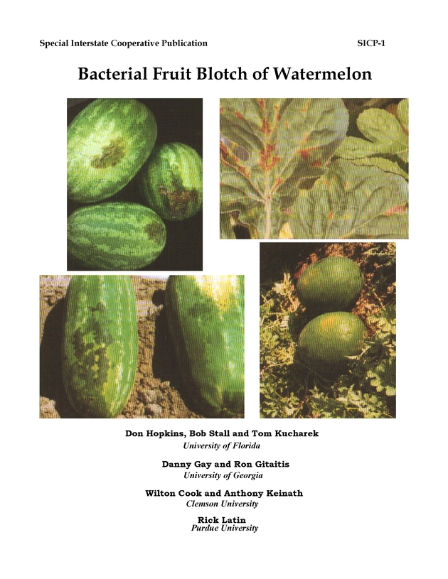 Bacterial fruit blotch of watermelon - Page 1