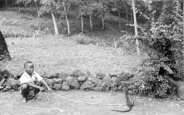 Photo: Liberian boy with tethered monkey.