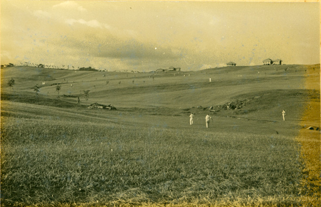 Photo: Possibly nursery areas? (Thousands of acres between Du and Farmington Rivers felled, cleared, burned in mid-1930s).