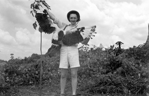 Photo: American man in hunting khakis and pith helmet with rifle, posing with a large unidentified bird.