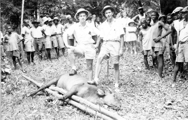 Photo: Two American men (Manis is on the right) pose over buffalo trophy, Liberian men and boys, American woman and children in background.