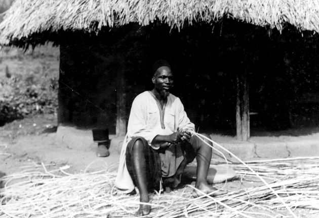 Photo: Liberian man cutting strips of reed or palm (for house construction?).