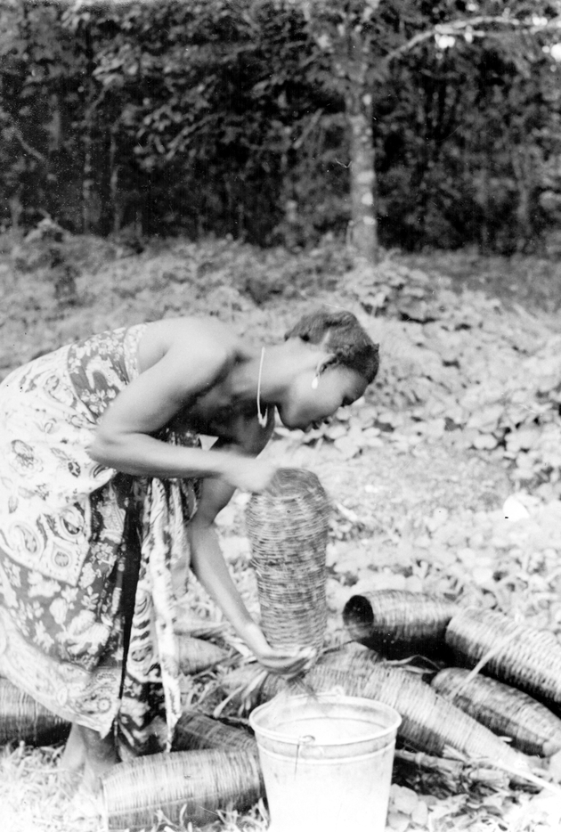 Photo: Young woman emptying crawfish from her traps, long narrow baskets, into a bucket.