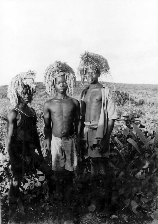 Photo: Three young men appear to be carrying bundles or sheaves of rice on their heads. Possibly to shade the sun?