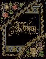 Memento Book of Maggie Johnson (1881-1882)