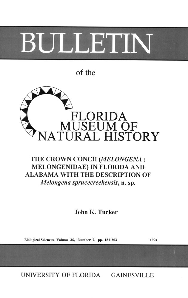 The Crown conch (MelongenaMelongenidae) in Florida and Alabama with the description of Melongena sprucecreekensis, n. sp. - Front Cover