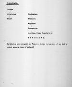 Dossier Katihabwa. Folio no. 1. Genealogie. Folio no. 2. Notice. Folio no. 3. Population d'apres le recencement fait en 1929; Gros et petit betail d'apres le recencement fait en 1929. Folio no. 4. Richesses et train de vie. Folio no. 6. Prestation au Roi. 5 pages.