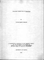 Cellulase production by Rhizobium