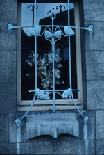 Exterior window with wrought iron