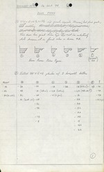 Ximenez-Fatio House - Field Notes September 16, 1974 (7 pages)