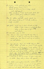 Ximenez-Fatio House - Field Notes September 24, 1974 (7 pages)
