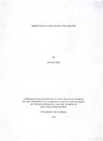 Modeling of a multileaf collimator