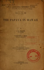 The papaya in Hawaii