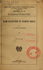 Yam culture in Porto Rico
