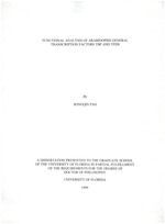 Functional analysis of arabidopsis general transcription factors TBP and TFIIB