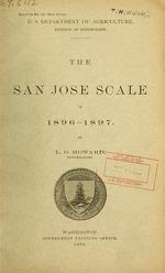 The San Jose scale in 1896-1897