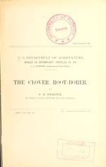 The clover root-borer
