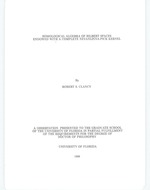 Homological algebra of Hilbert spaces endowed with a complete Nevanlinna-Pick kernel