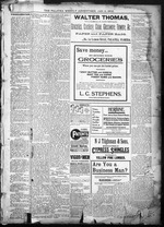 The Palatka news and advertiser