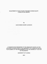 Adjustment of adults with traumatic brain injury : a qualitative inquiry